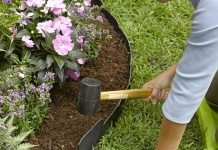 landscape decorating tips