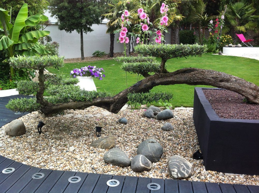 Landscape backyard design ideas decorating tips for Decoration de petit jardin