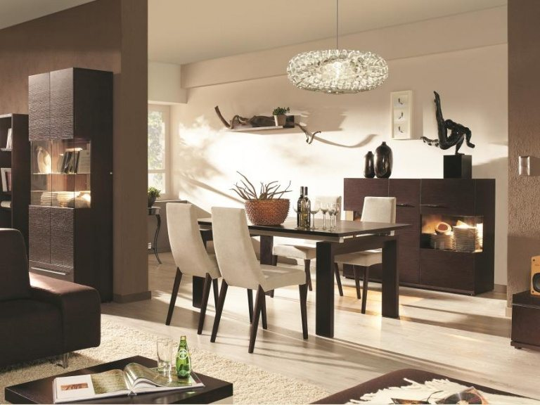 Modern Dining Room Designs and Decorating Ideas