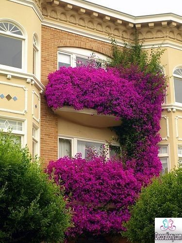 13 romantic juliet balcony design ideas decoration y for Balcony flowers