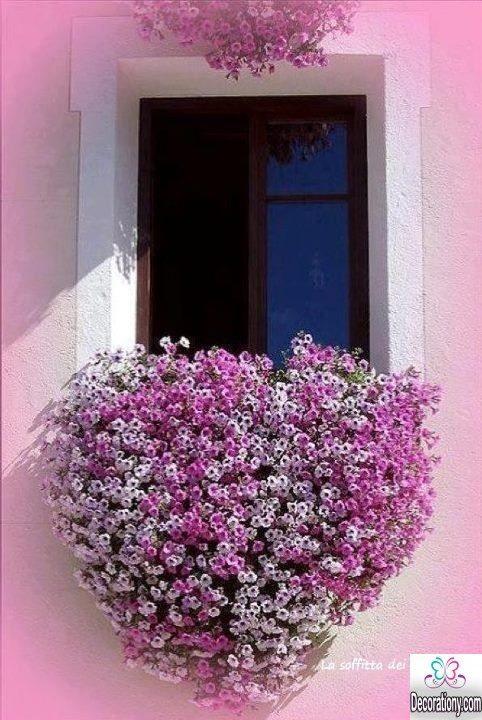beautiful flowerd window