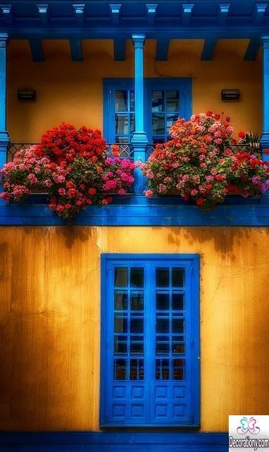 the balcony with flowers