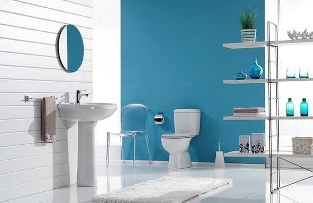Sky Blue & White Bathroom Color Schemes