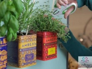 Plant indoor herb garden using stylish old tea jars & attaching them with magnets on the fridge