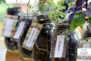 Planting your indoor herb garden into inexpensive mason jars