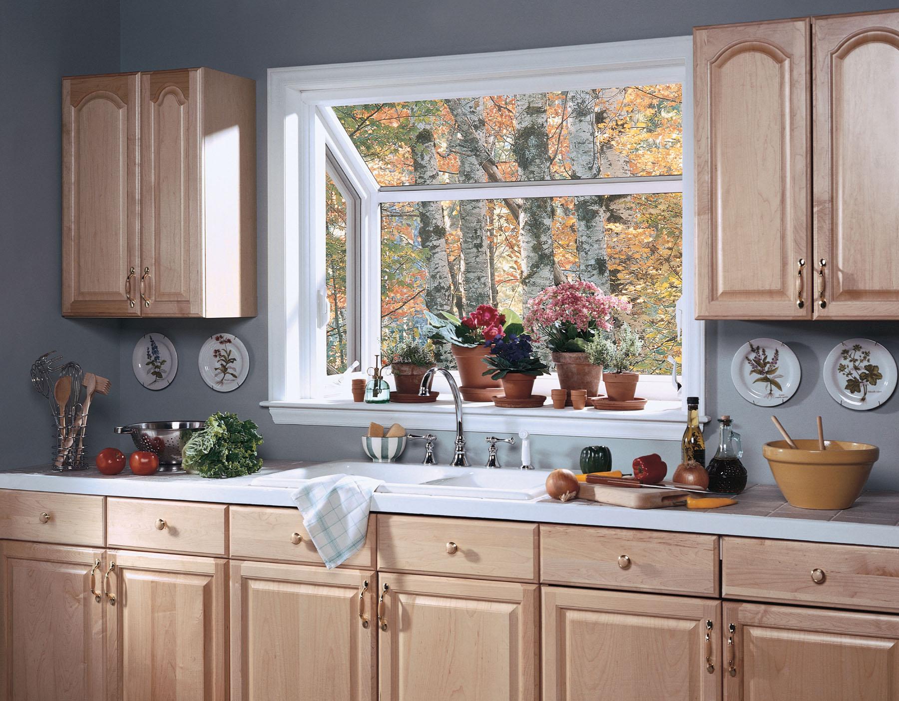 Elegant kitchen windows
