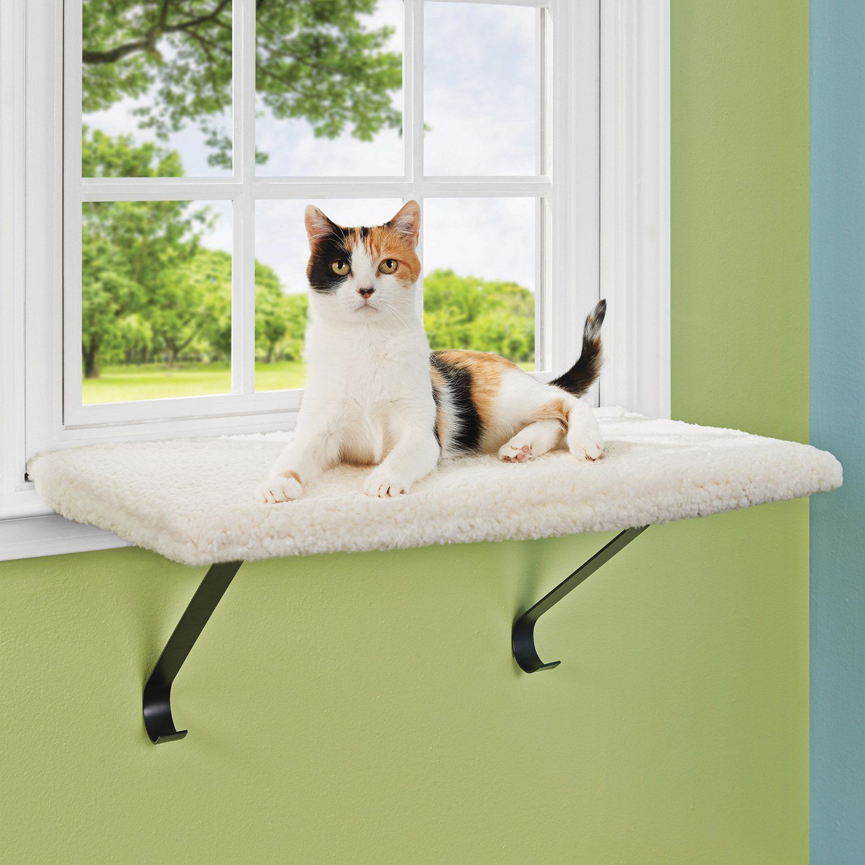 cat window seats