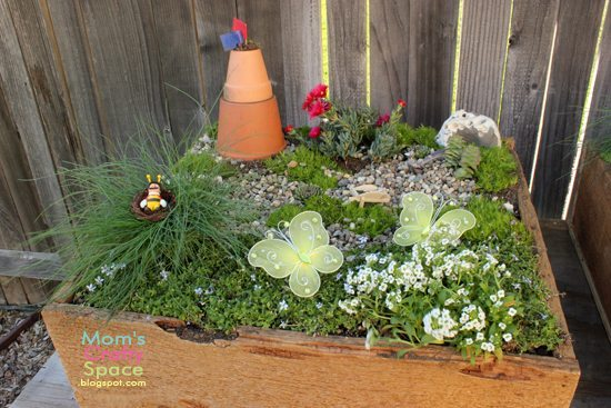 fairy garden real grass