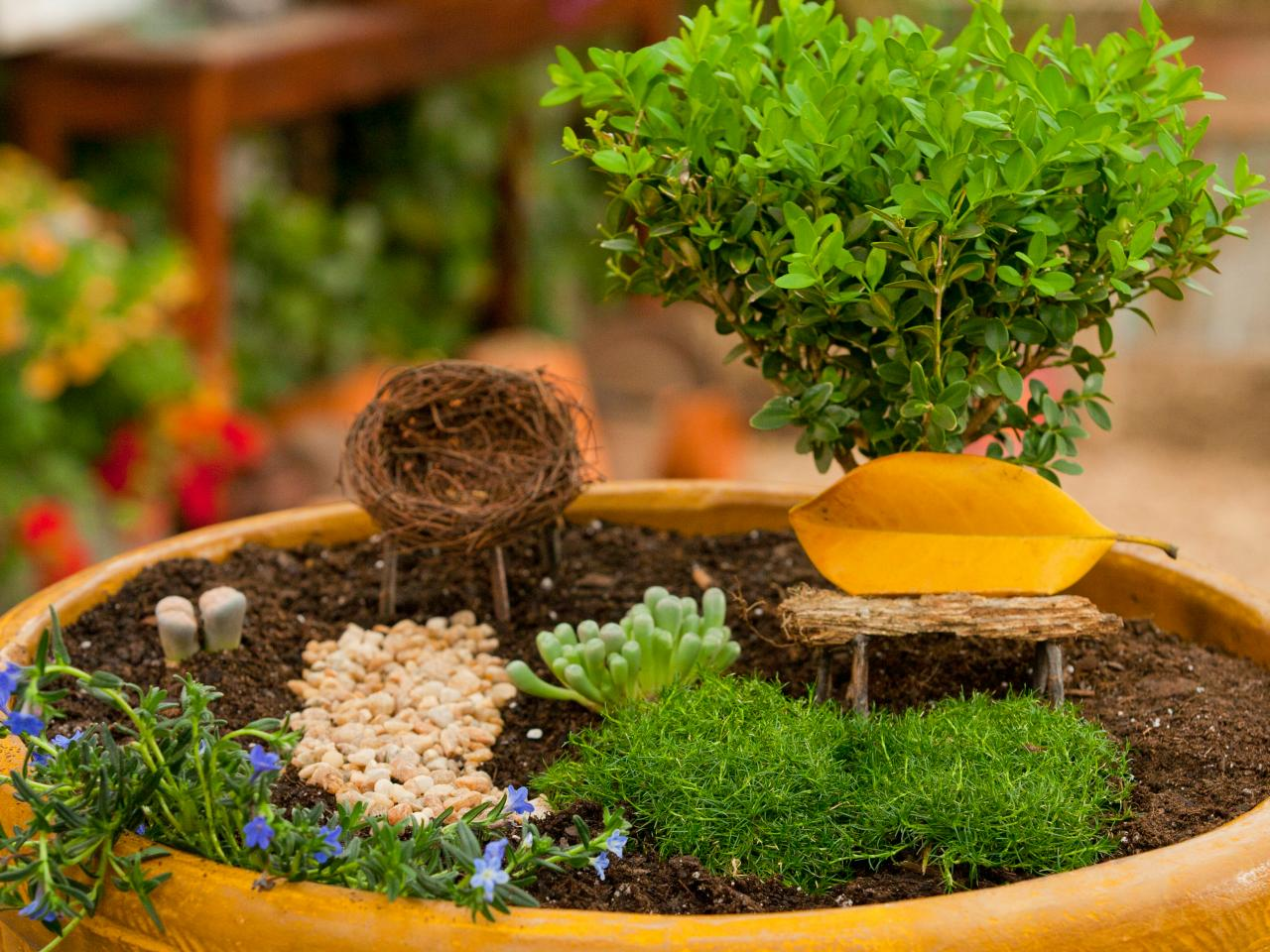 How to make fairy garden container?