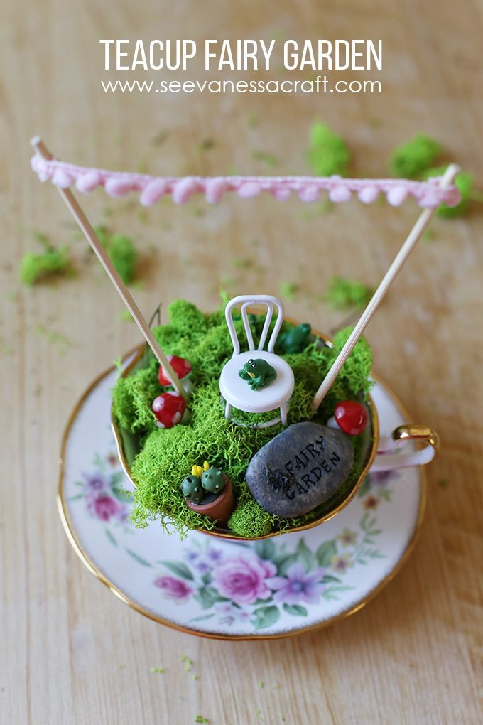Fairy garden in tea cup