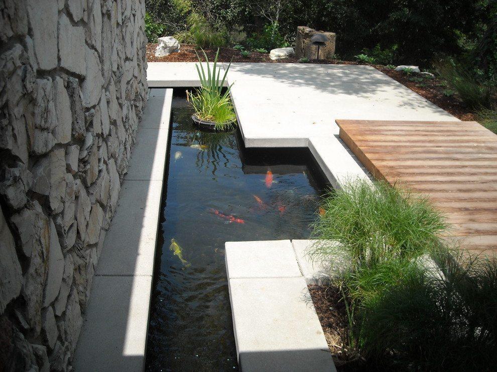 Contemporary backyard ponds