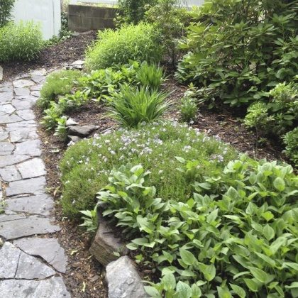 low budget front yard landscaping makeover ideas