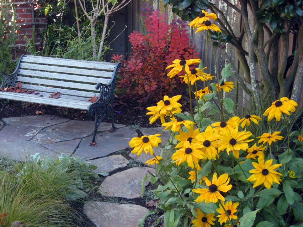 front yard landscaping ideas - low budget projects