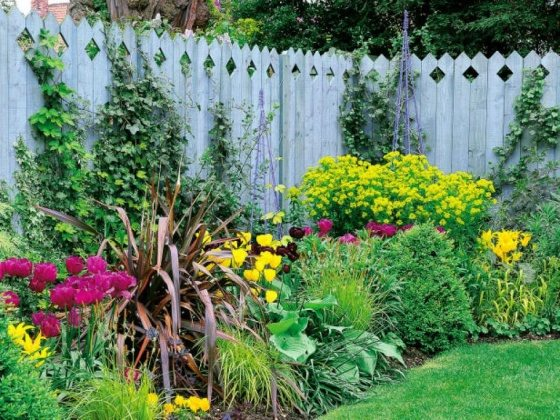 front yard ideas colorful flowers