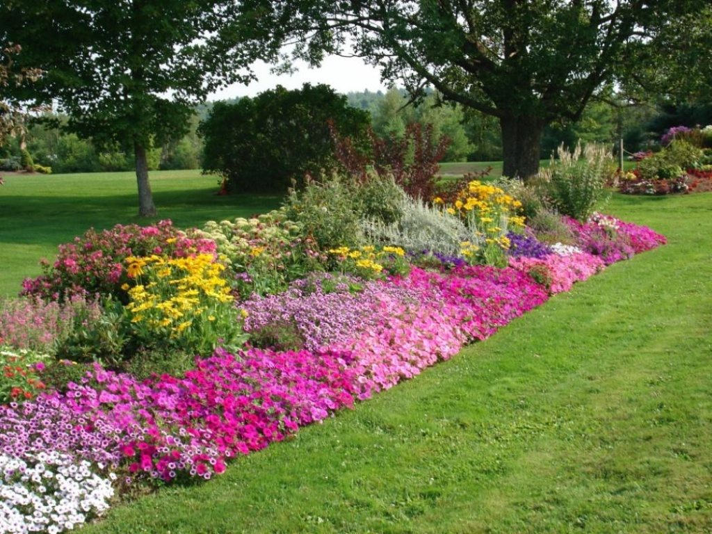 fine flower bed ideas
