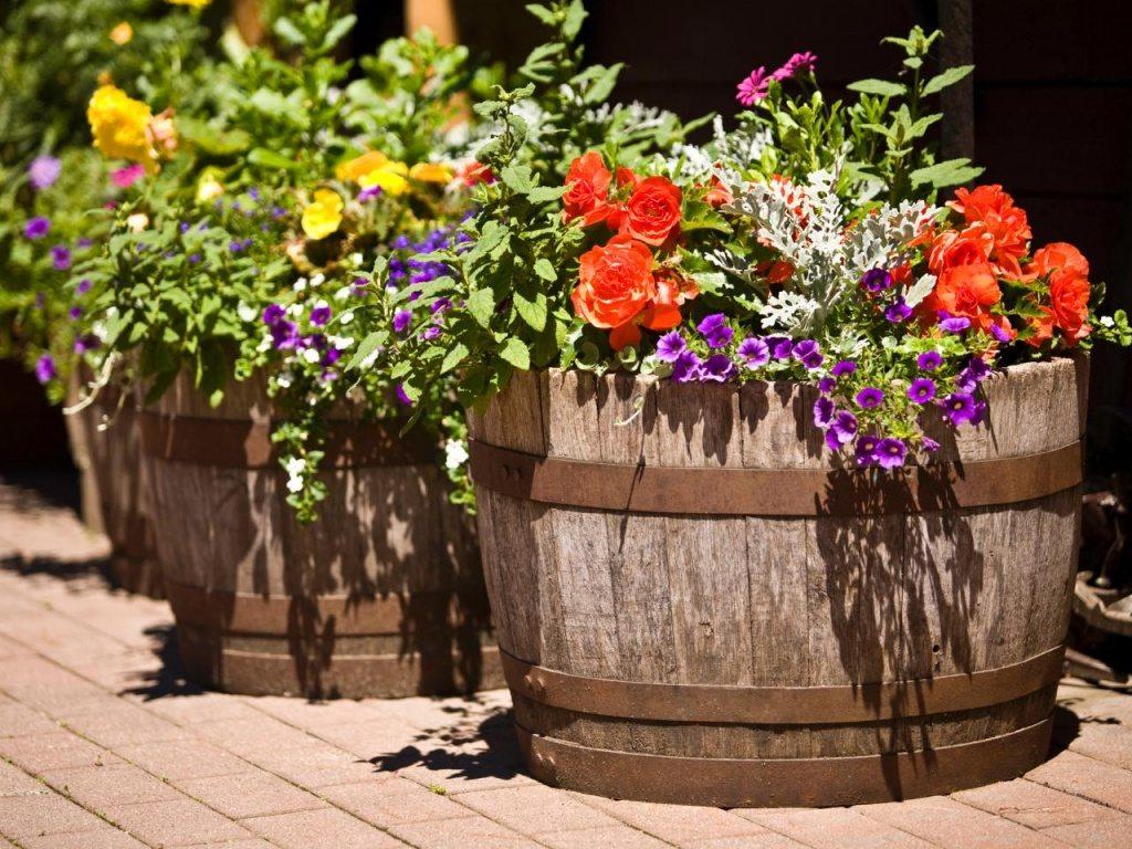 all about flower pot ideas