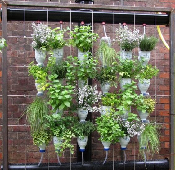 new amazing flower pot ideas