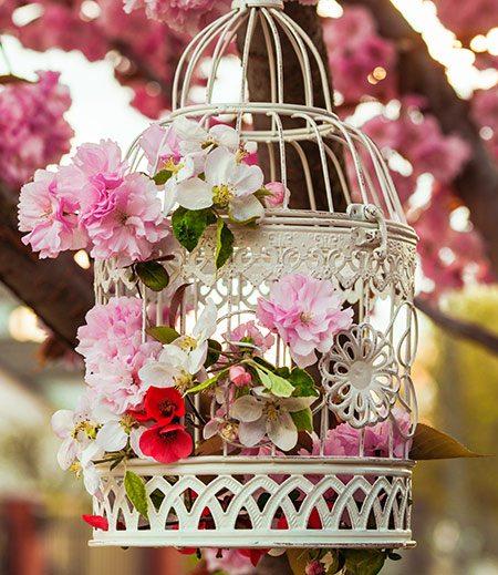 more flower pot ideas
