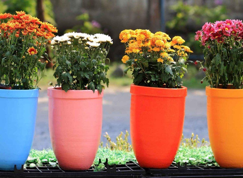 best of flower pot ideas