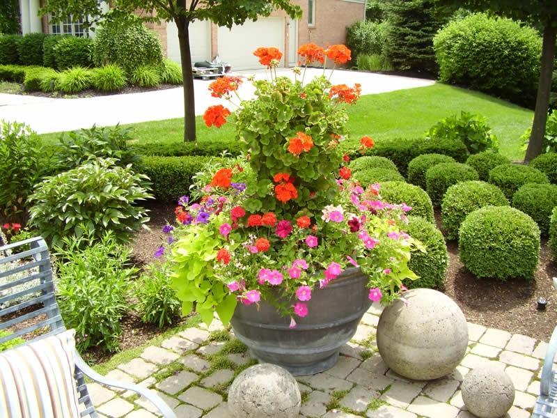 all new flower pot ideas