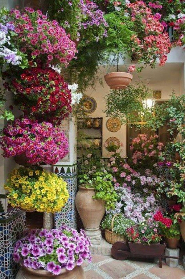 about all flower pot ideas