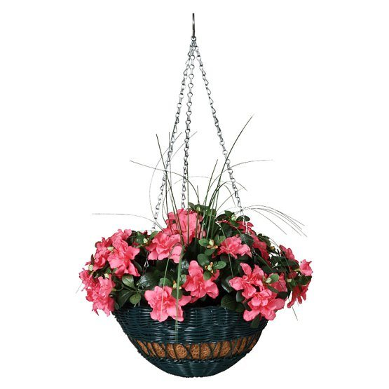 the top flower pot ideas