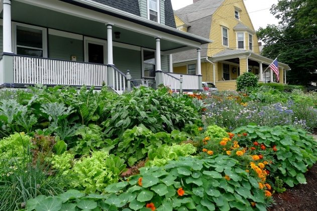 front-yard-edible-landscaping-ideas