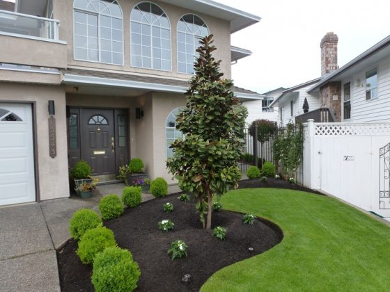front-yard-makeover-3-18 (1)