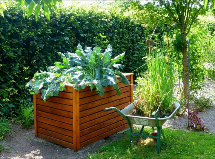 how to start a garden quickly