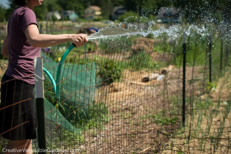 how to start a garden skilfully