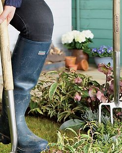 how to start a garden simply