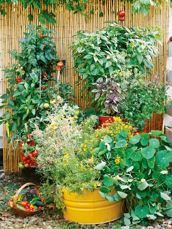 how to start a garden with ease