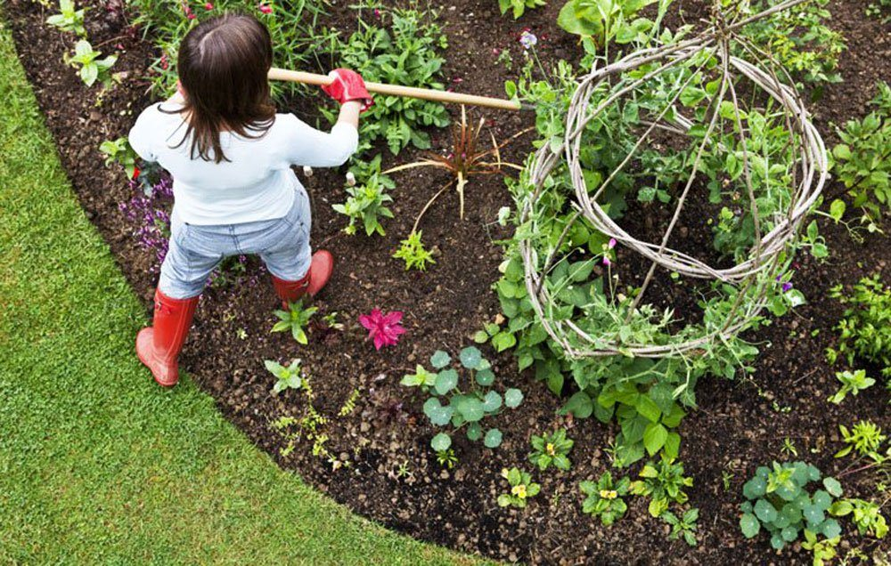 about how to start a garden