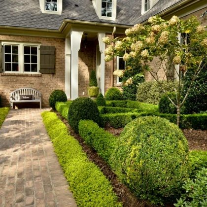 cool front yard design
