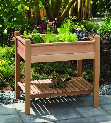 PHAT-TOMMY-Elevated-Planter-Box