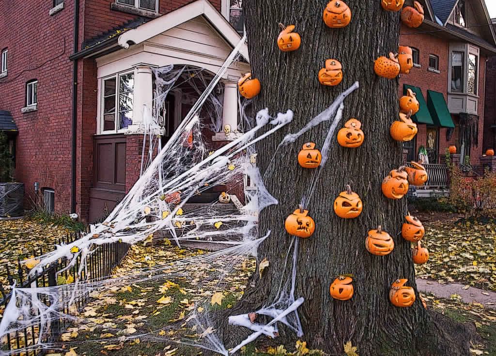 Outdoor Halloween Decorations Stuck to the tree