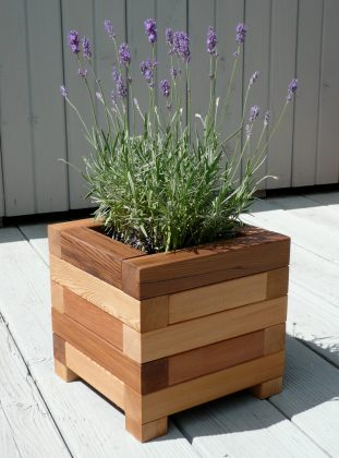 Wooden-plant-holders-WOODZ-3
