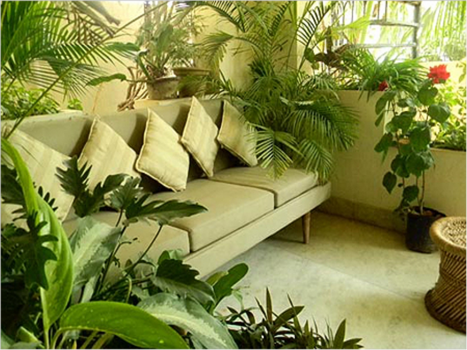 Meditation Room Decorating Space area and potted plant