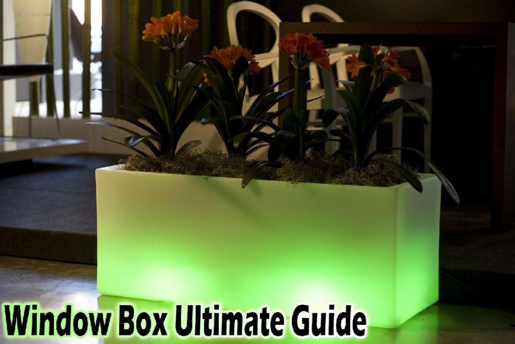 window box ultimate guide 2018