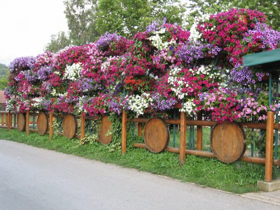 Privacy Fence Ideas-Fence to scrub their hands