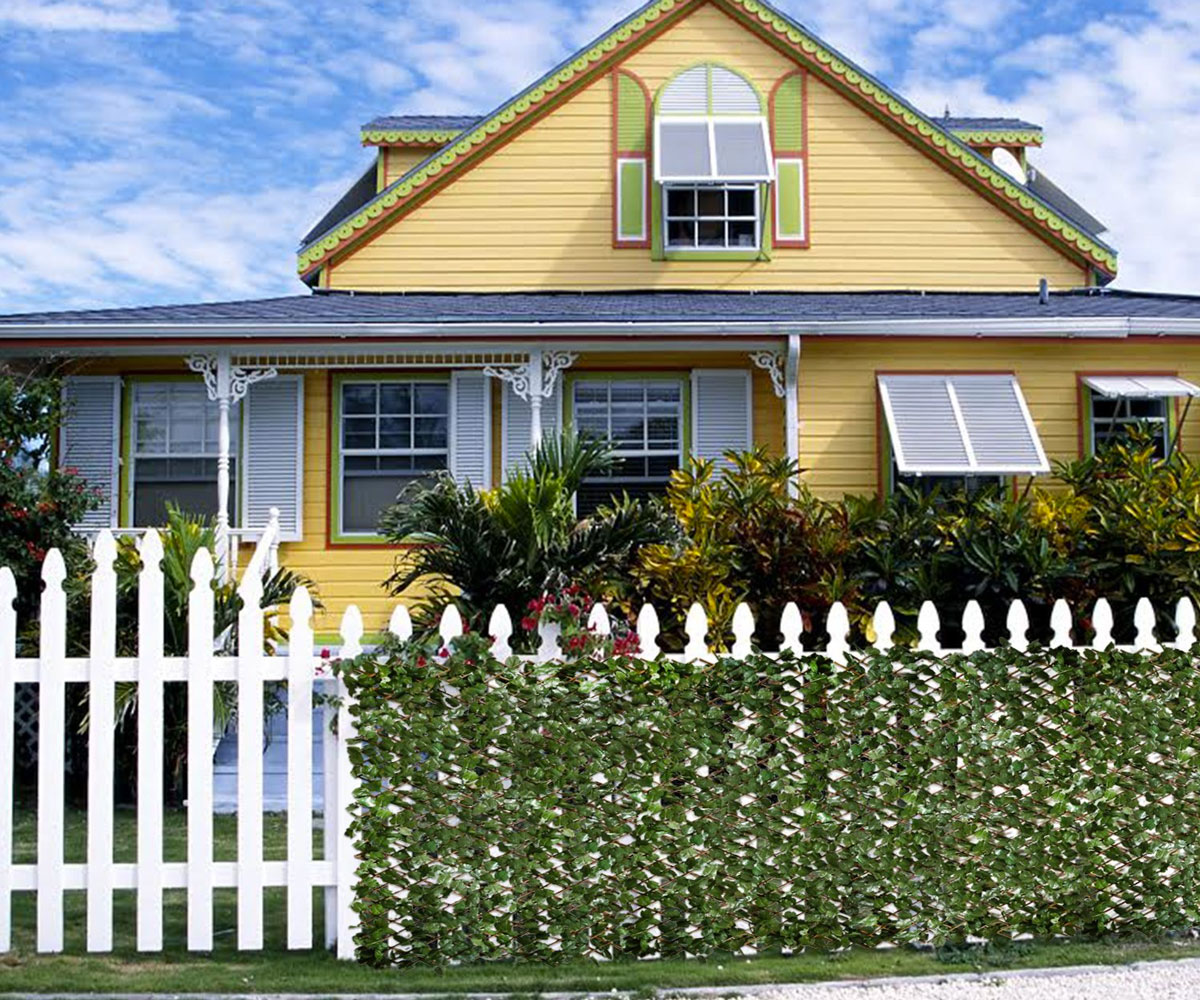Privacy Fence Ideas-Ivy privacy fence