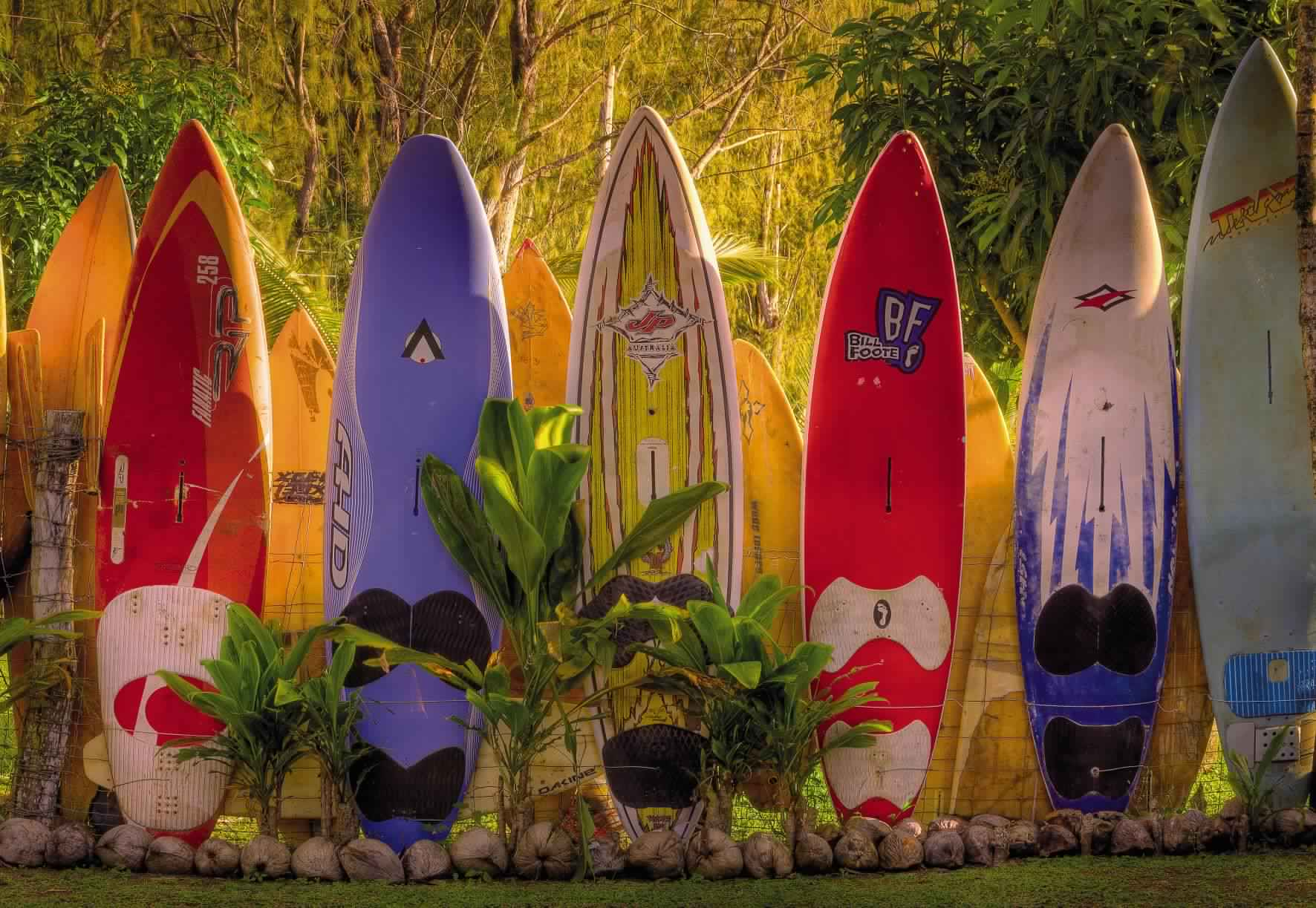 Privacy Fence Ideas-colorful surfboard fence