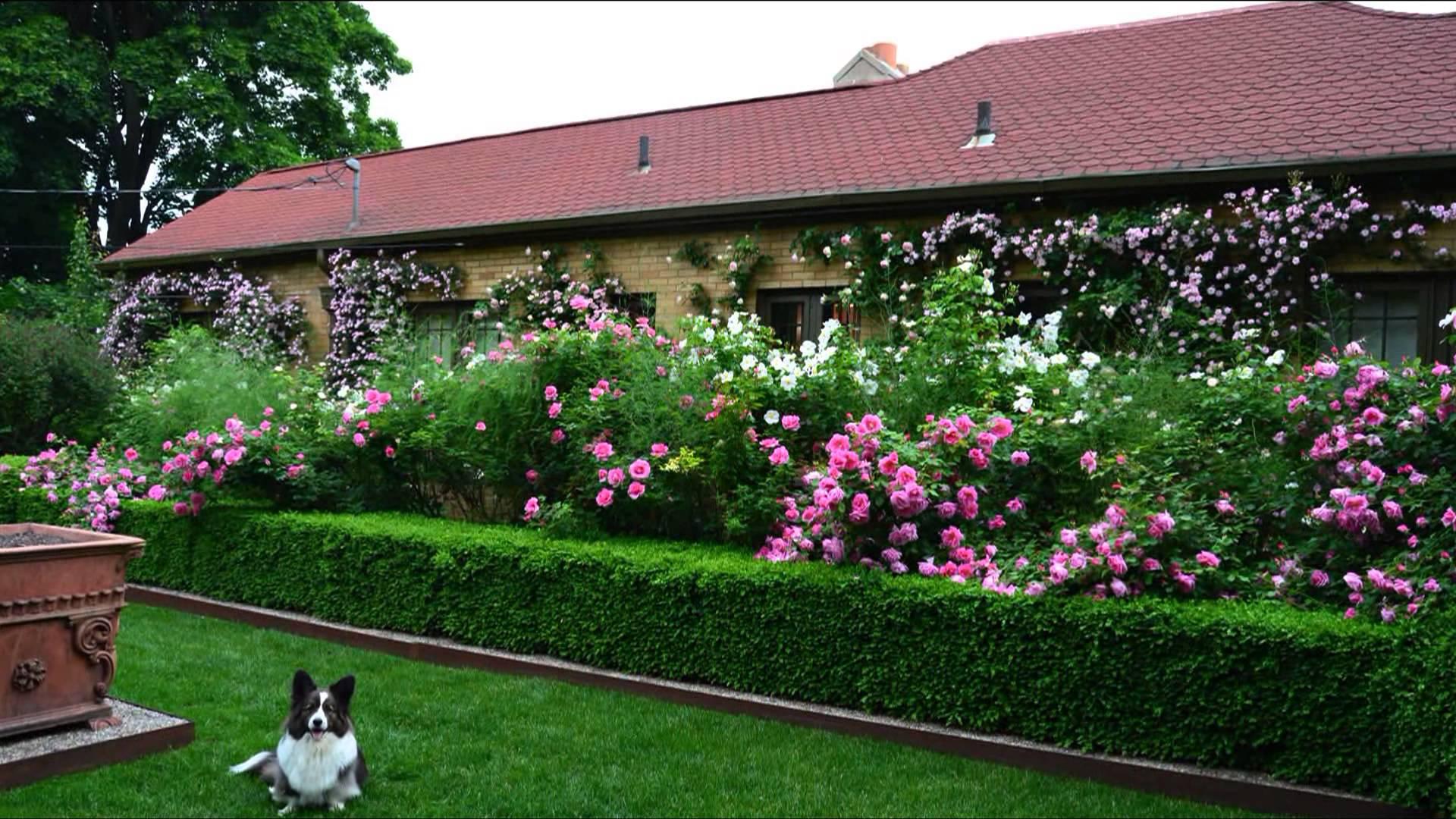 Privacy Fence Ideas-garden decoration