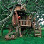 modern kids tree houses