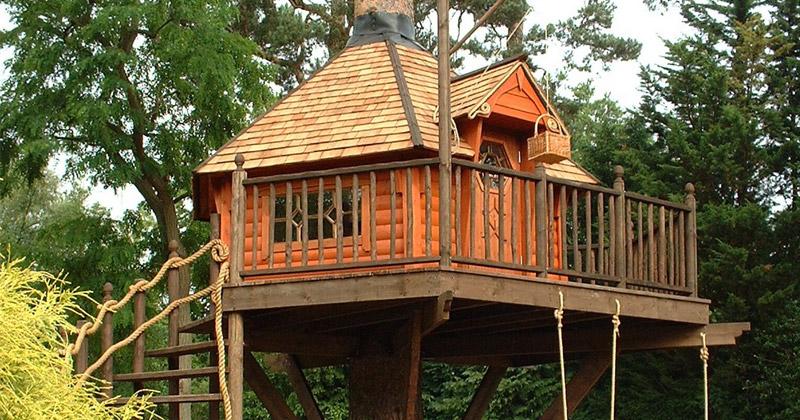 cool kids tree houses