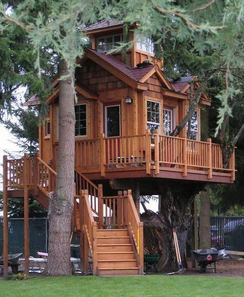 amazing kids tree houses