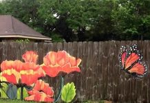 Privacy Fence Ideas-paint a fence at the cottage