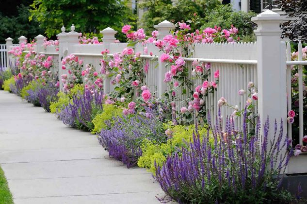 Privacy Fence Ideas-woodwork fences
