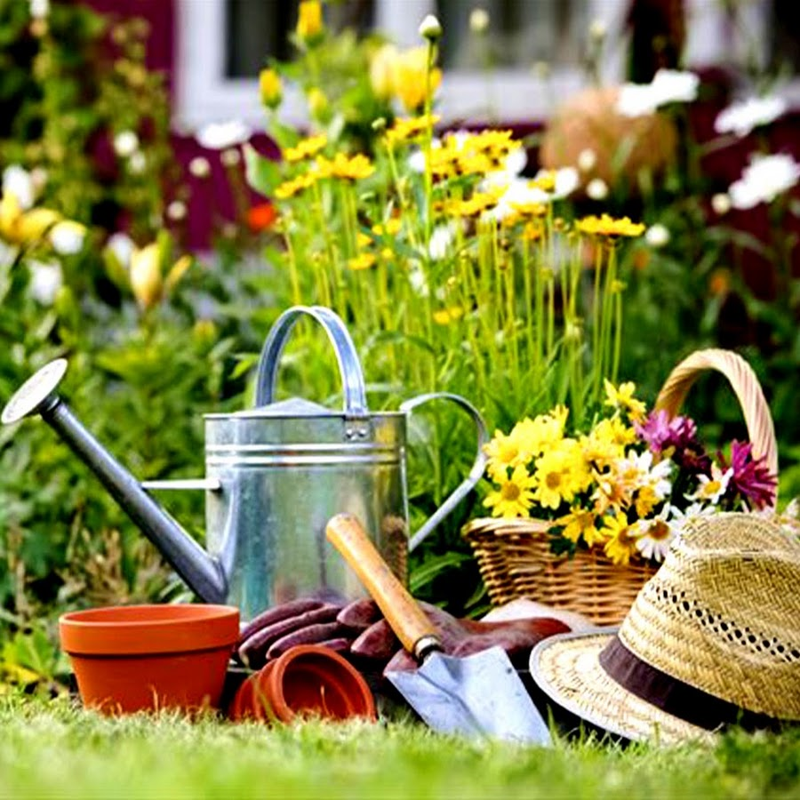 home gardening ideas