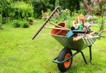 grass cutting tips